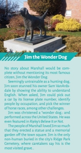 Jim the Wonder Dog sidebar