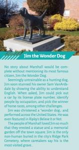 Jim the Wonder Dog sidebar